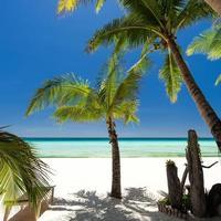 plage blanche photo