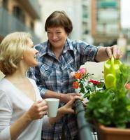 deux femmes boivent du thé sur le balcon