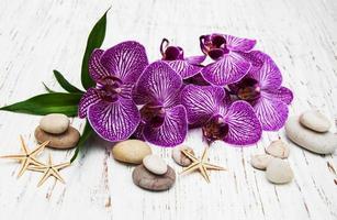 orchidées et pierre de massage photo