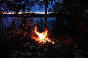 feu de joie en forme d'oiseau de feu
