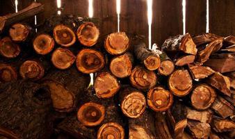 pile de bois de chauffage photo