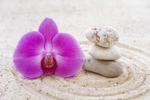 orchidée avec pierres zen