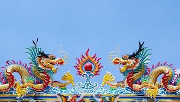 le dragon photo
