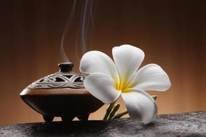 aromathérapie photo