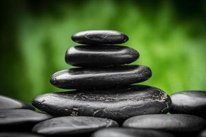 zen photo