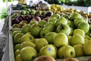pommes assorties exposées au marché de producteurs photo