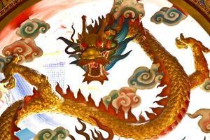 dragon photo