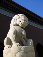 lion en pierre statue de la tour tiananmen, beijing photo