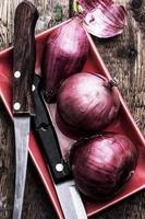 oignons, légumes sains photo