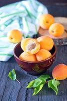 abricots photo