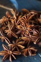 étoile sèche d'anis biologique
