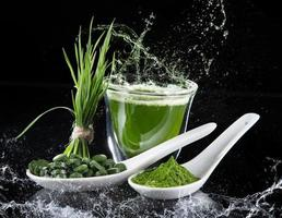 jeune orge, superaliment chlorella. photo