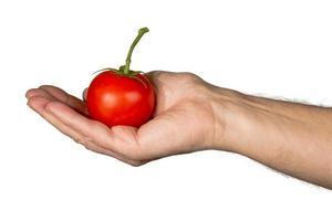 Mans caucasien main tenant une grosse tomate biologique