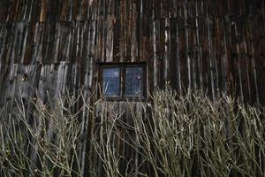 fenêtre de cabine en bois photo