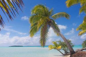 île de rêve du sud du pacifique photo