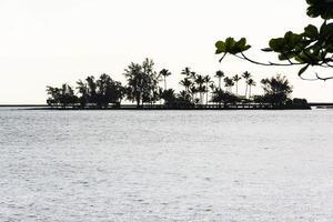 l'île de noix de coco, hawaï