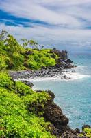 la végétation sur la plage de galets, wai'anapanapa