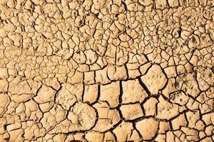 terre fissurée