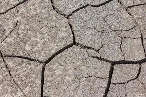 terre sèche et craquelée