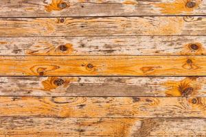 Texture du bois