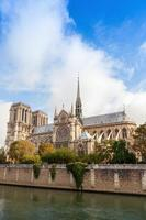 notre dame de paris, photo verticale