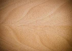 Texture du bois .