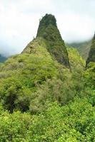 Aiguille iao dans le parc d'état de la vallée sur maui hawaii