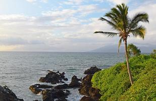 Wailea Point, Maui photo
