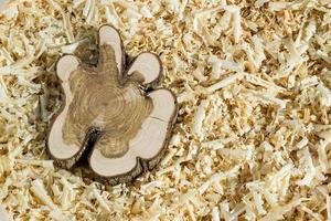bloc de bois sur copeaux