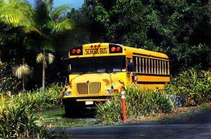 fin de journée scolaire sur la grande île photo