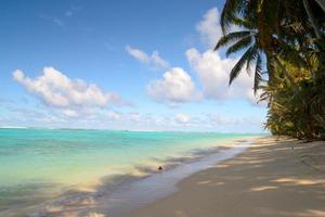 plage tropicale ombragée