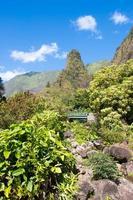 parc d'état de la vallée d'iao photo