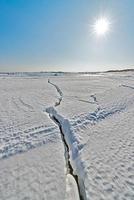 la nature de l'île de sakhalin, en russie. photo