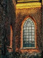 église de lierre photo