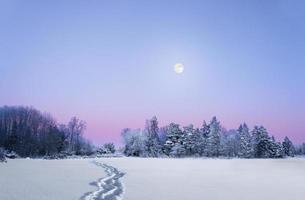 paysage d'hiver du soir avec la pleine lune photo