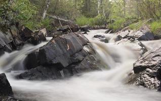 rivière naturelle, réserve naturelle en suède photo