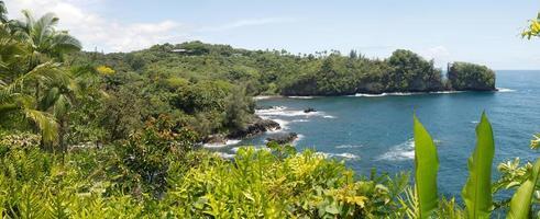 paysage tropical hawaïen