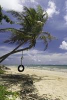 balançoire de pneu de plage tropicale