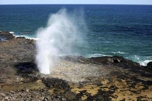 Océan Pacifique jaillissant corne, Hawaii