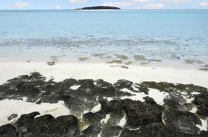 Paysage d'une île à pied dans les îles Cook de la lagune d'Aitutaki