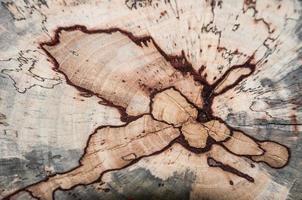 texture en bois grunge utilisée comme arrière-plan