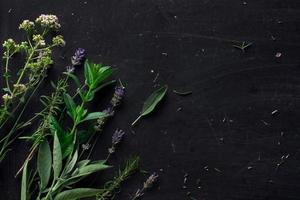 herbes françaises sur la vue de dessus de bureau noir