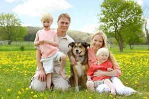 portrait de famille heureuse dans le pré de fleurs