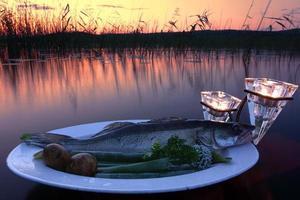 prise de poisson sur une assiette au-dessus de l'eau au bord du lac photo