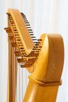 gros plan de la harpe celtique avec angle