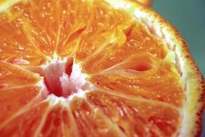 gros plan orange photo