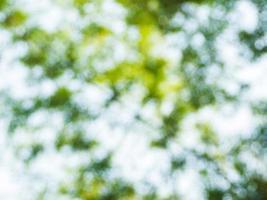 fond de bokeh de lumière naturelle. photo