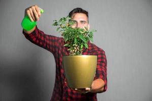 jeune homme pulvérise des fleurs, isolé sur gris photo