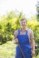 portrait, confiant, jardinier, tenue, râteau, plante, pépinière