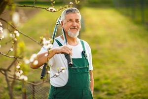 portrait, de, a, beau, homme aîné, jardinage photo